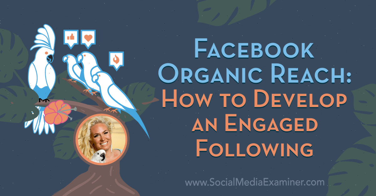 Internet marketing Facebook Organic Reach: How to Develop an Engaged Following