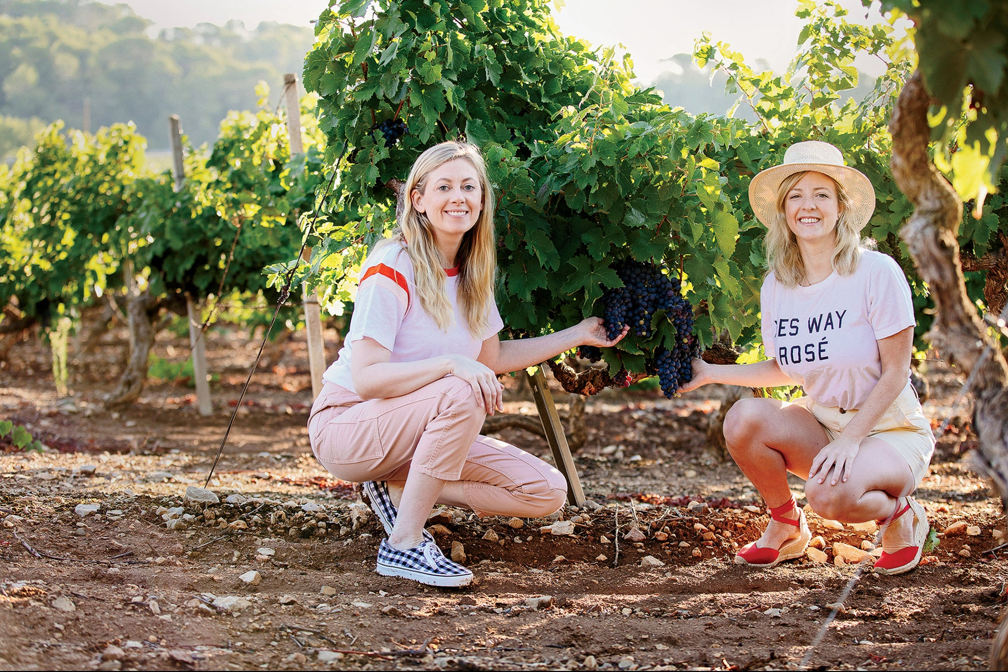 Internet marketing How Yes Way Rosé Won Over the Wine World